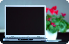 Image of a laptop with flowers in background.